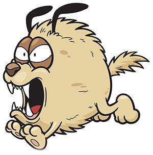 В МЧС назвали способы отпугнуть агрессивных собак ...